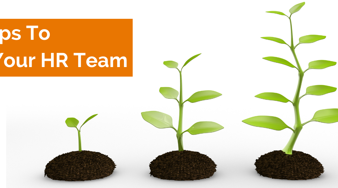 The Three Steps to Building Your HR Team